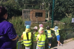 Pre-School Trip to Blackpool Zoo 1